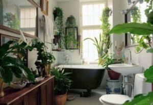 How to design a garden with indoor garden ideas