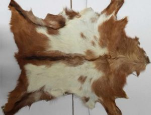 The Wonderfully Soft and Inviting Single Sheepskin Has A Multitude Of Uses